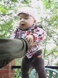 鎌倉 カフェ 赤ちゃん連れ